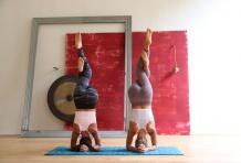 Yoga Press Experience